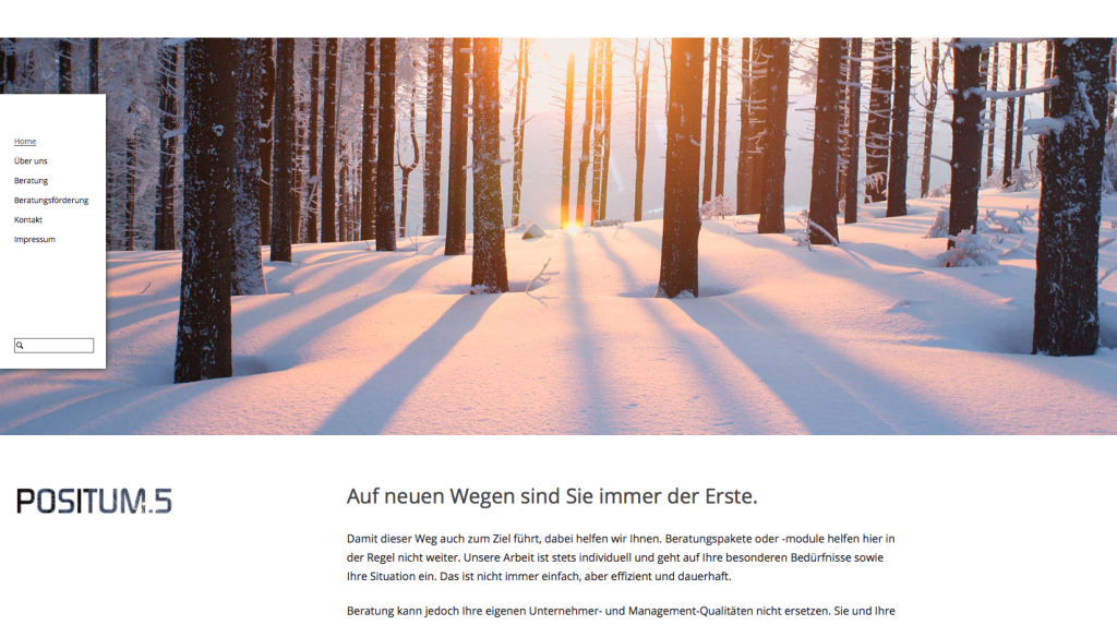 Screenshot_www.positum5.de_01